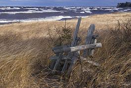 Lake Superior Shores